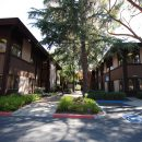 Just Leased | Woodlands Office Park | Walnut Creek