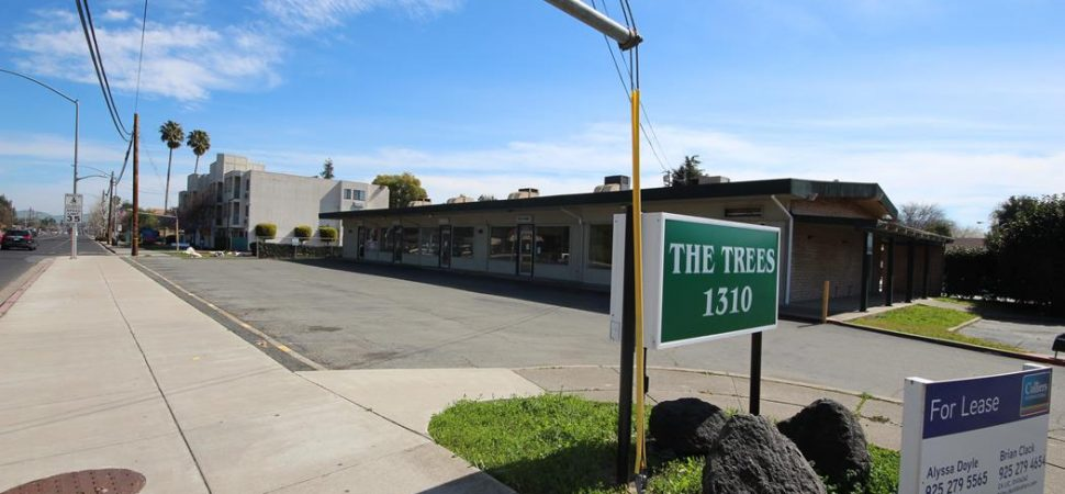 Trees 031719 (8)